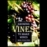Growing Vines to Make Wine