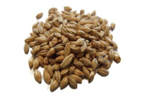 Munich Malt Crushed Grain 500g